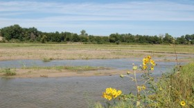 This is a photo of Water_Demands_on_the_Platte-_Part_2-_Managing_The_Central_Platte_For_Wildlife