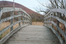 This is a photo of millbrook-marsh
